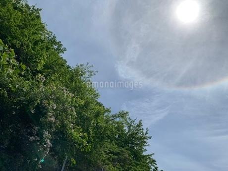 太陽の写真素材 [FYI03397209]