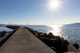 朝日に映える明石港と明石海峡大橋の写真素材 [FYI03397309]