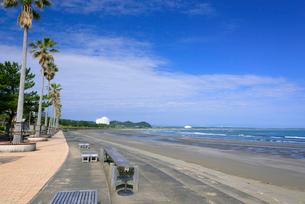 青島ビーチの写真素材 [FYI03397442]