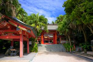 青島神社の写真素材 [FYI03397448]