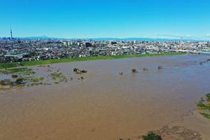 台風で増水した江戸川の写真素材 [FYI03397656]