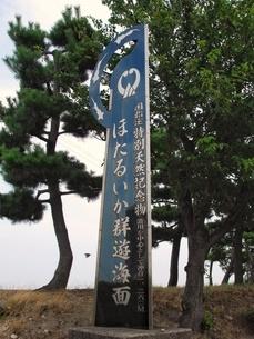ほたるいか群遊海面記念碑の写真素材 [FYI03397762]