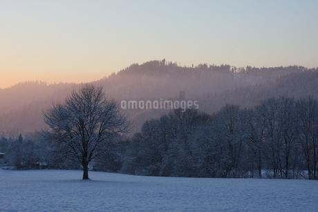 南ドイツ・雪景色の写真素材 [FYI03397768]