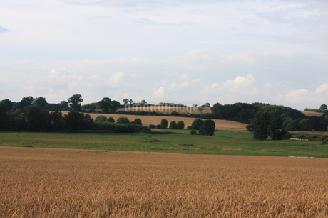 北ドイツ・農地の写真素材 [FYI03397788]