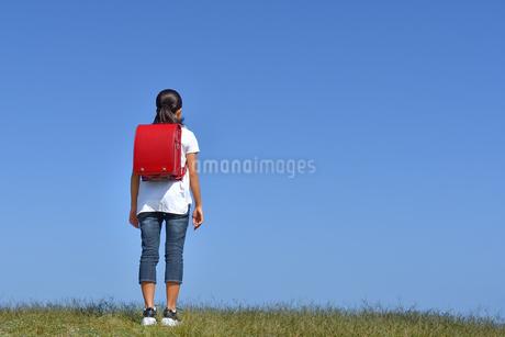 青空に立つ小学生の女の子(後姿)の写真素材 [FYI03398256]