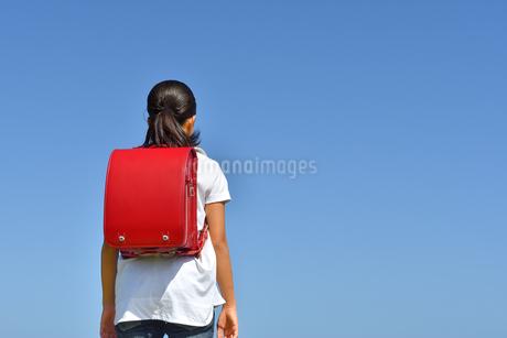 青空に立つ小学生の女の子(後姿)の写真素材 [FYI03398257]