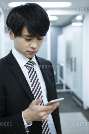 スマートフォンを見るビジネスマンの写真素材 [FYI03398355]