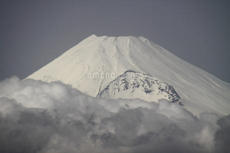 富士山の写真素材 [FYI03398448]