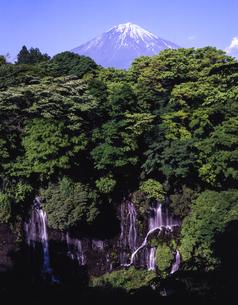 白糸の滝と富士山 日本 静岡県 富士宮市の写真素材 [FYI03398545]