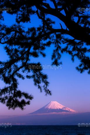 西伊豆戸田温泉から見る富士山 日本 静岡県 沼津市の写真素材 [FYI03398547]