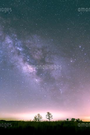 朝霧高原と星空 日本 静岡県 富士宮市の写真素材 [FYI03398585]