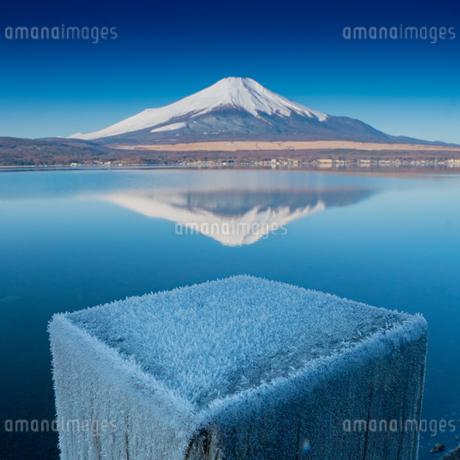 山中湖から見る富士山 日本 山梨県 山中湖村の写真素材 [FYI03398745]