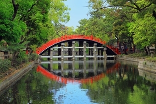 住吉大社 反橋の写真素材 [FYI03399079]