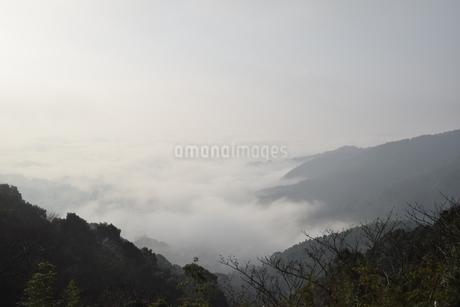 雲海の写真素材 [FYI03399238]