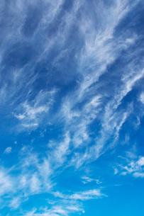 雲の写真素材 [FYI03399273]