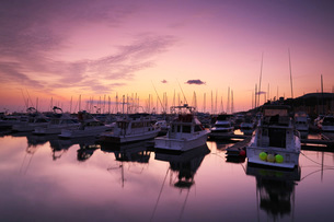小樽港マリーナの朝の写真素材 [FYI03399283]