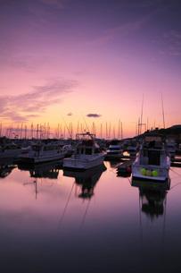 小樽港マリーナの朝の写真素材 [FYI03399285]