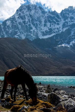 高原の景色の写真素材 [FYI03399381]