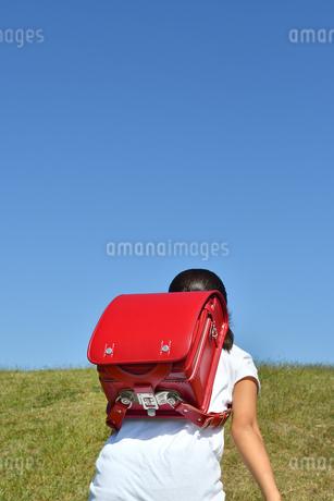 青空で走る小学生の女の子(後姿)の写真素材 [FYI03399476]