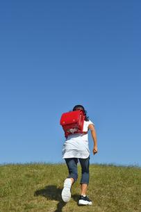 青空で走る小学生の女の子(後姿)の写真素材 [FYI03399481]
