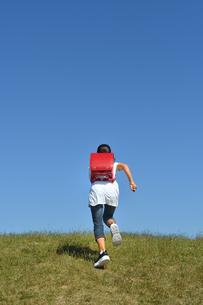 青空で走る小学生の女の子(後姿)の写真素材 [FYI03399484]