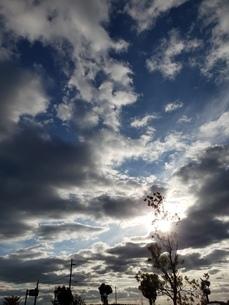 秋の空 秋の日差しの写真素材 [FYI03399496]