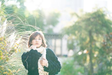 マフラーの女性の写真素材 [FYI03399645]