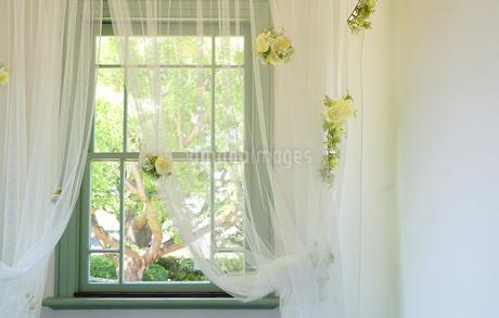 部屋の窓のカーテンの写真素材 [FYI03400755]
