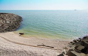 晴れた青空の日の海岸の写真素材 [FYI03400795]