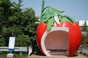 トマトの形のバス停の写真素材 [FYI03400827]