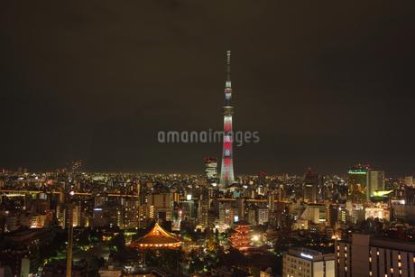 東京の夜景の写真素材 [FYI03400875]
