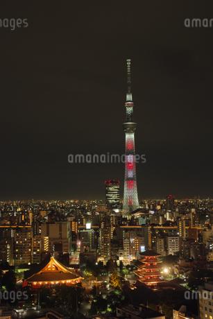 東京の夜景の写真素材 [FYI03400876]
