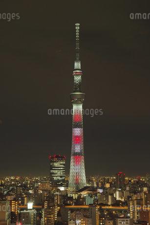 東京の夜景の写真素材 [FYI03400877]