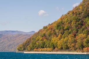 秋の支笏湖の写真素材 [FYI03400993]