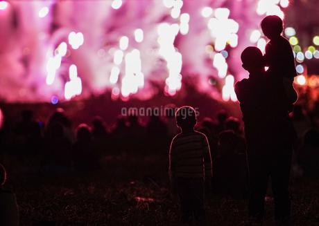 たまがわ花火大会の花火と観客(2018年)の写真素材 [FYI03401038]