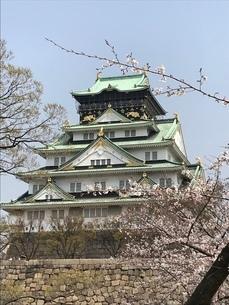 桜降る大阪城の写真素材 [FYI03401133]