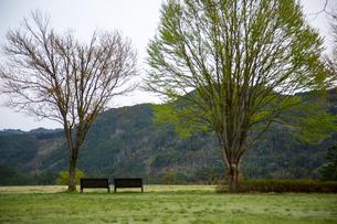 高原のベンチの写真素材 [FYI03401227]