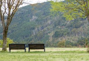高原のベンチの写真素材 [FYI03401228]