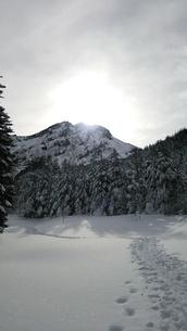赤岳へのトレイルの写真素材 [FYI03401345]