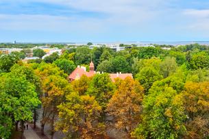 パットクリ展望台から見たタリン市街の写真素材 [FYI03401434]