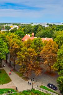 パットクリ展望台から見たのタリン市街の写真素材 [FYI03401437]