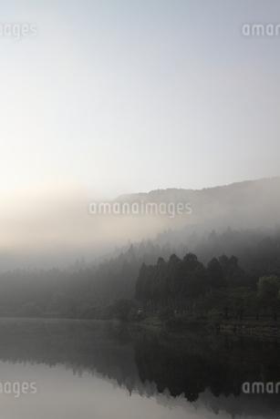 早朝の余呉湖の写真素材 [FYI03401522]