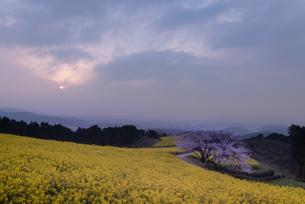 白木峰高原からの眺め 日本 長崎県 諫早市の写真素材 [FYI03401559]