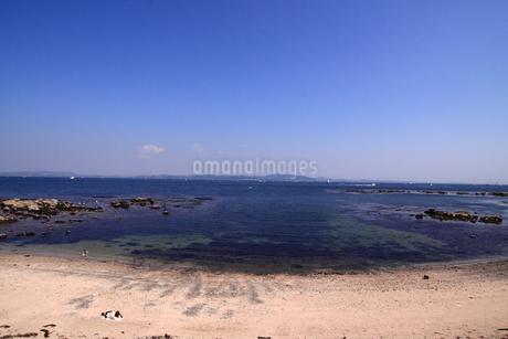 海岸の写真素材 [FYI03401562]