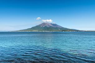 海と桜島の写真素材 [FYI03401580]