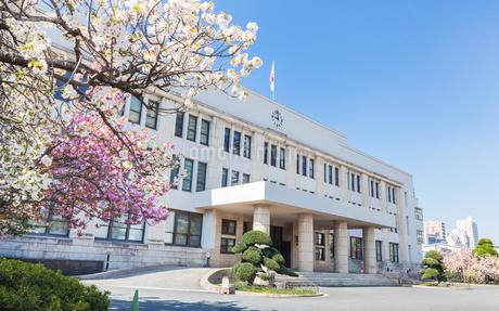 大阪造幣局本局と満開の桜の写真素材 [FYI03401635]