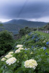 高原町 御池 日本 宮崎県の写真素材 [FYI03401653]