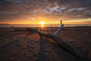夕暮れの海岸 日本 秋田県 由利本荘市の写真素材 [FYI03401688]