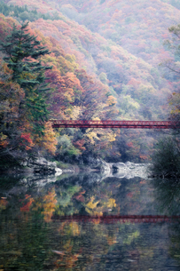 抱返り渓谷 日本 秋田県 仙北市の写真素材 [FYI03401741]