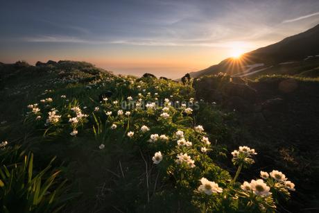 鳥海山からの眺め 日本 山形県 遊佐町の写真素材 [FYI03401786]